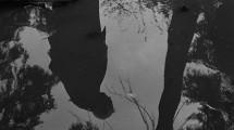 Земляничная поляна (1957), фото 5