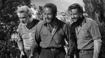 Сокровища Сьерра Мадре (1948), фото 6