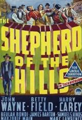 Ковбой с холмов (1941), постер 1